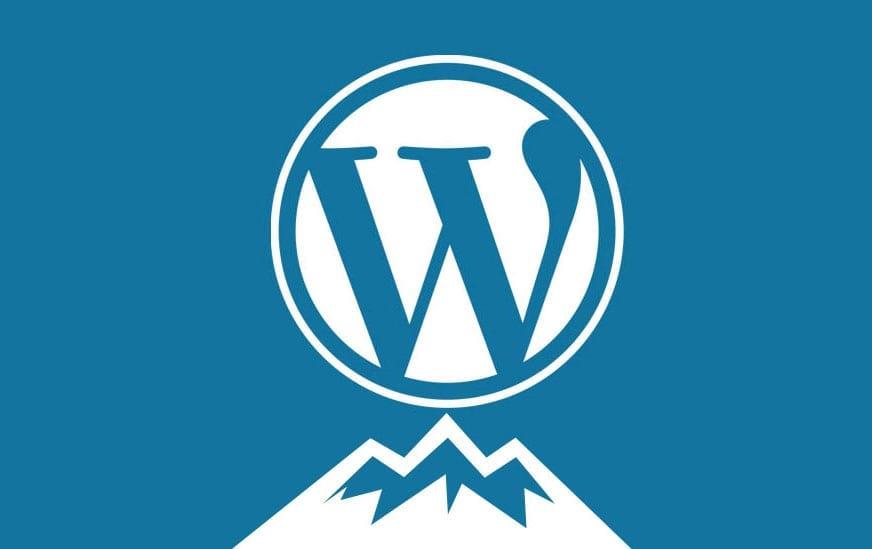 WordPress still on top