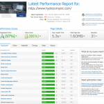 Launching the Website and Performance Tuning